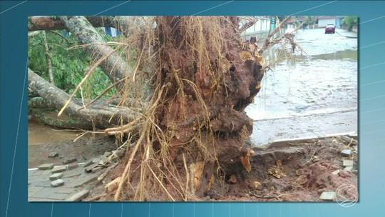 Chuva forte com granizo causa estragos no distrito de Avelar, em Paty do Alferes, RJ