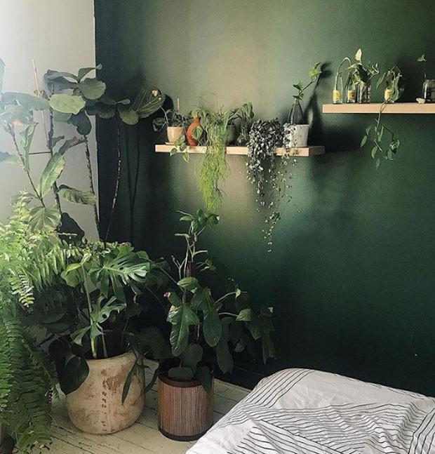 plantmama-instagram (Foto: Reprodução/ Instagram)