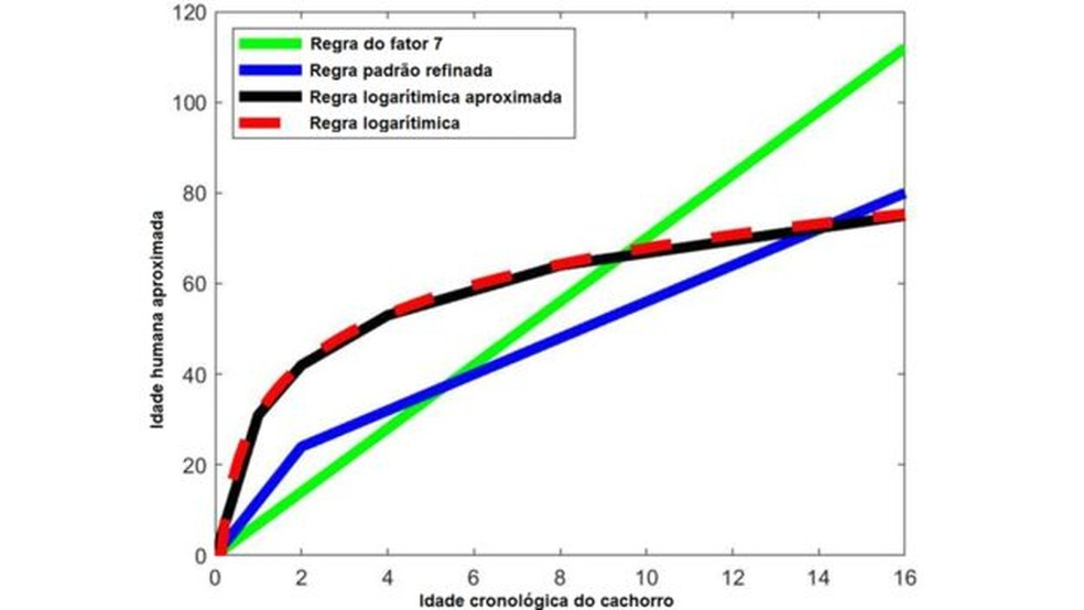 Gráfico mostra variação da idade do cachorro, de acordo com os métodos de cálculos — Foto: BBC