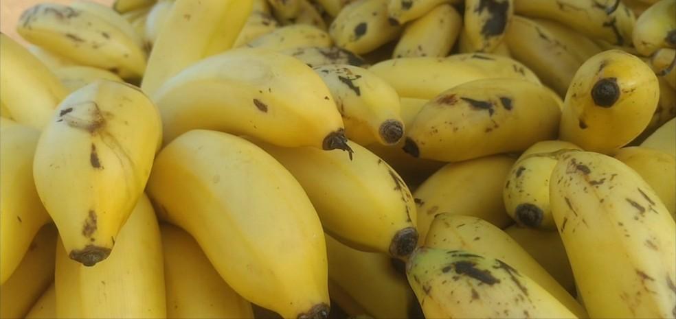 Quilo da banana maçã custa R$ 1,50 em Rolim de Moura e R$ 2,00 em Cacoal (Foto: Rede Amazônica/Reprodução )