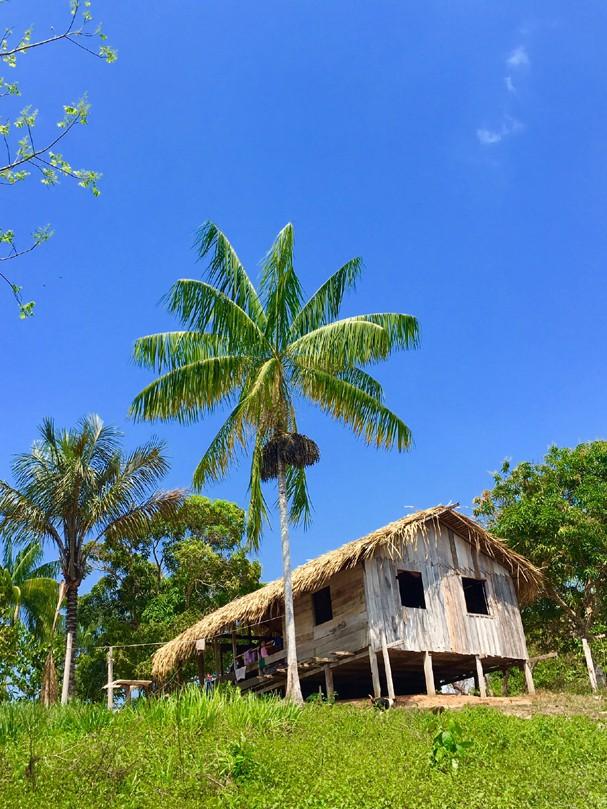 Detox & Yoga na Amazônia (Foto: Helen Pomposelli)