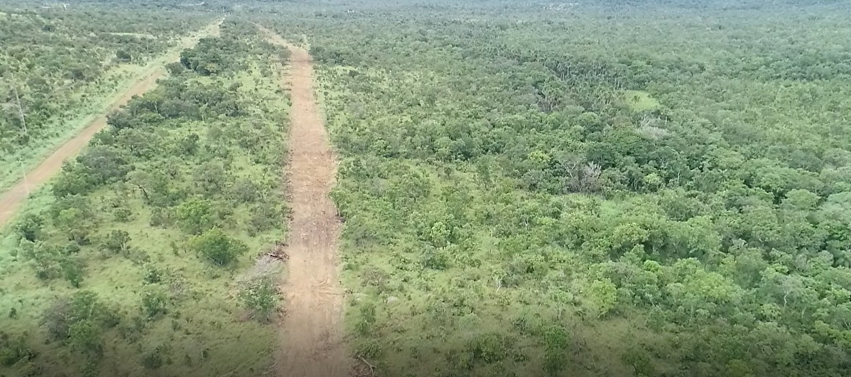 Família que alega possuir terra há mais de 50 anos trava batalha judicial após área ser doada para Exército - Notícias - Plantão Diário