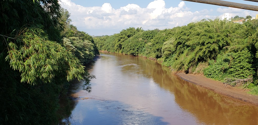 Rio Paraopeba em Brumadinho, na Região Metropolitana de Belo Horizonte — Foto: Thais Pimentel/G1