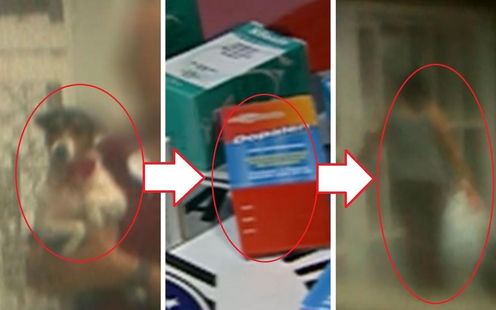 Nas marcações: cão é flagrado por detetive particular; ele teria tomado remédio e em seguida morrido, sendo levado por Dalva para fora da casa dentro de um saco plástico (Foto: Arquivo/Globo News)