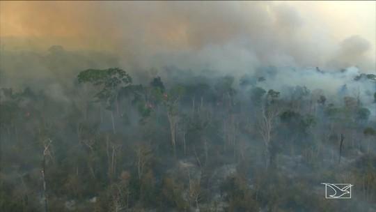 Brigadistas tentam apagar incêndios em terras indígenas no Maranhão