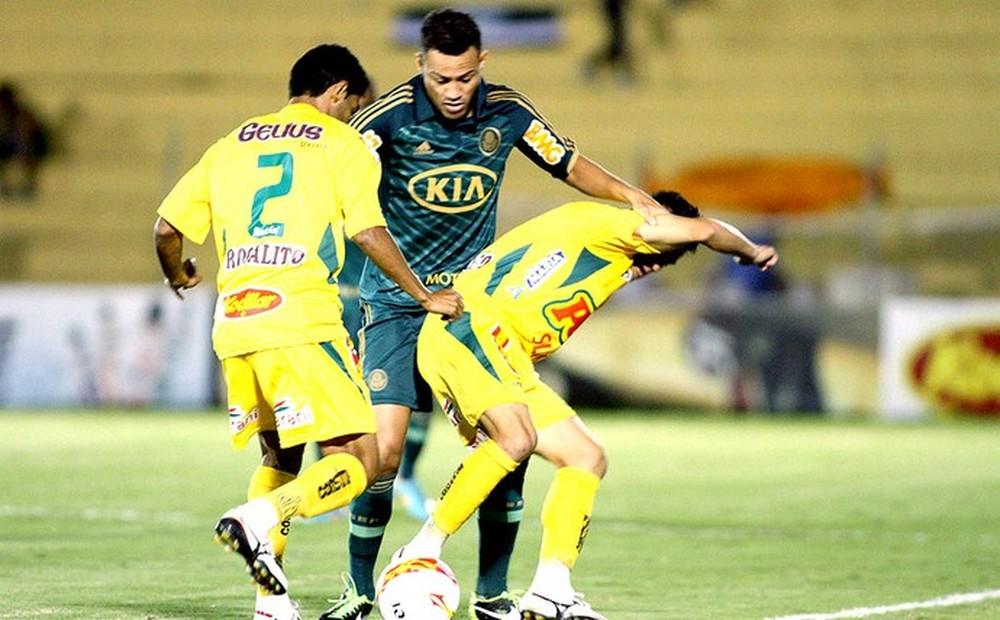 Mais rico, campeão e badalado: a transformação do Palmeiras antes de voltar a Mirassol
