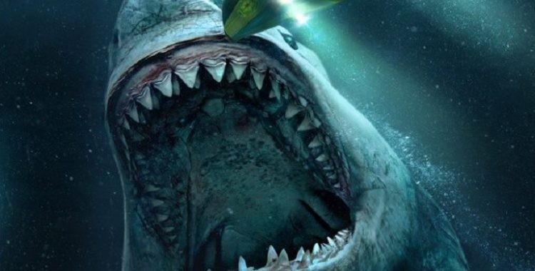 'Megatubarão': o que é verdade sobre tubarões pré-históricos