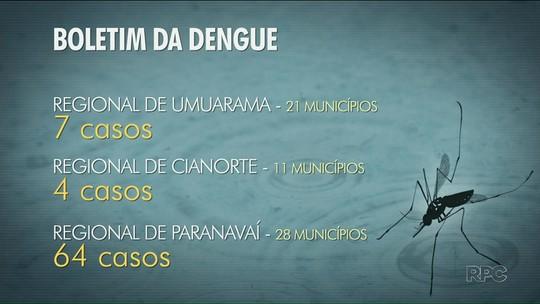 Incidência de dengue é baixa na região noroeste do Paraná