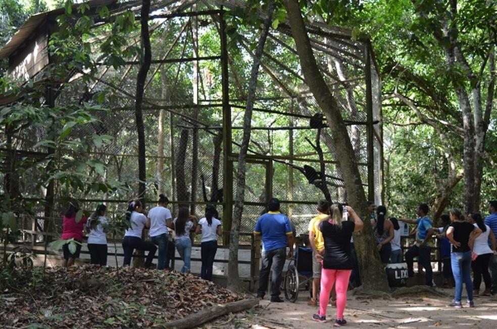 ZooUnama é muito procurado por visitantes no período de férias — Foto: Unama/Divulgação