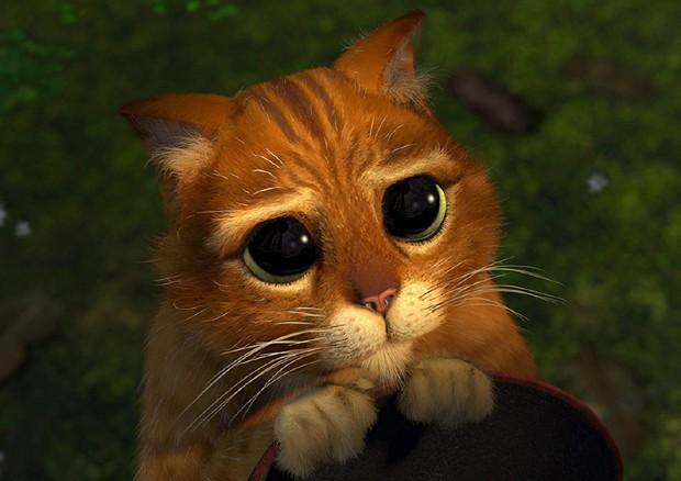 Gato de Botas, o personagem de Antonio Banderas na franquia Shrek (Foto: Divulgação)