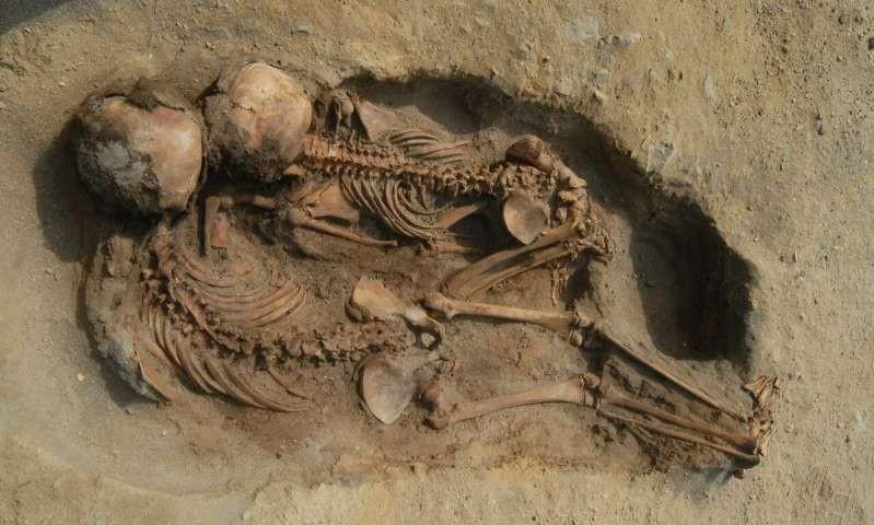 Acredita-se que crianças e animais tenham sido mortos em ritual (Foto: Reprodução/John Verano)