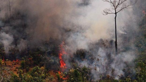 Aumento de mais de 80% nos incêndios este ano, na comparação com 2018, foi amplamente noticiado no exterior e virou um dos temas centrais da reunião do G7 na França (Foto: CARL DE SOUZA / AFP, via BBC News Brasil)
