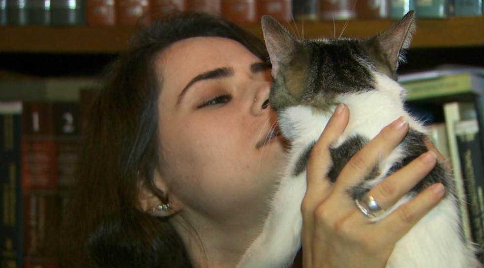 A gata Lua é uma das filhas de pelo de Thais, em Ribeirão Preto, SP — Foto: Foto: Alexandre Sá/EPTV