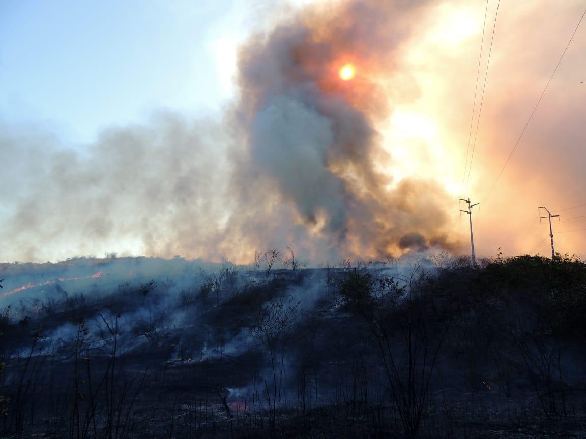 Incêndio em Sobral chega perto de empresas com álcool armazenado; bombeiros controlaram as chamas