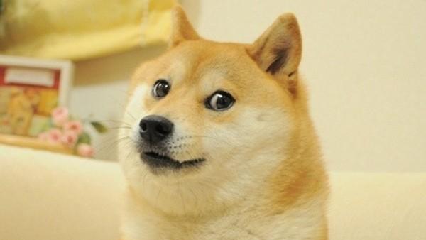 Meme Doge é vendido como NFT por US$ 4 milhões e bate recorde | Tecnologia | G1