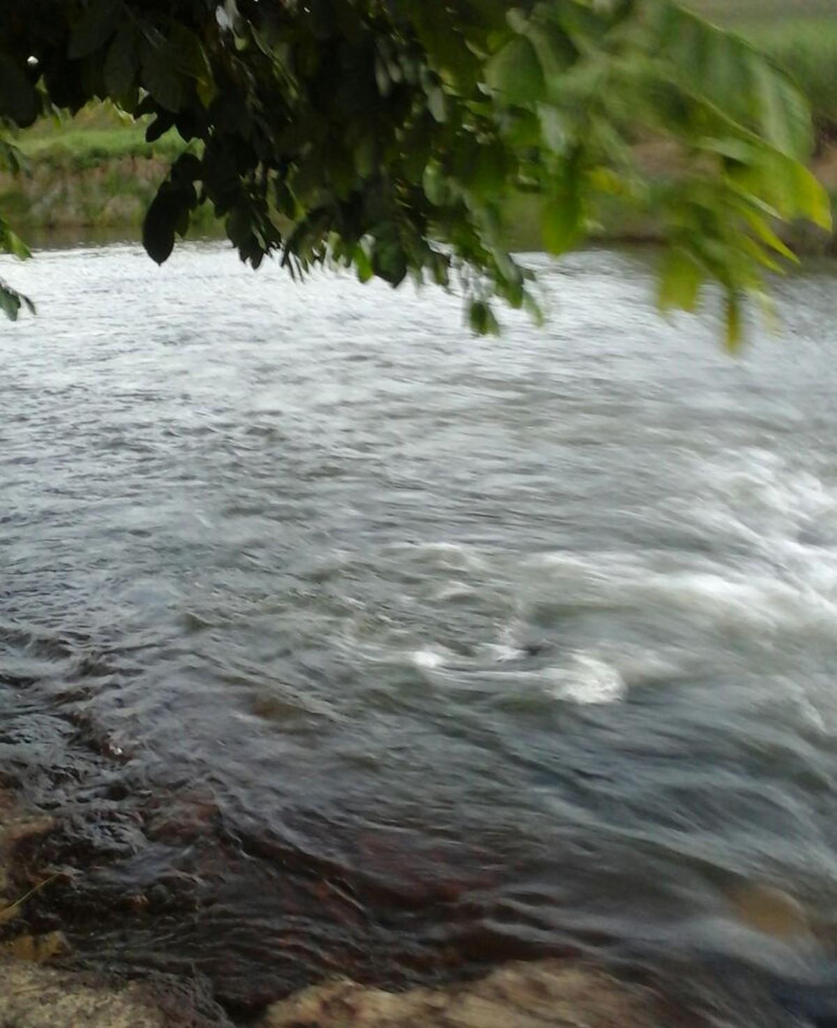Pai e filho morrem afogados em rio de Cortês, na Mata Sul