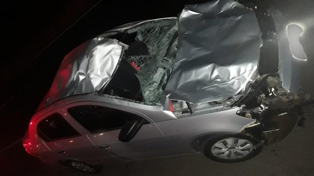 Cavalo morre após ser atingido por carro no Anel Viário em Uberlândia