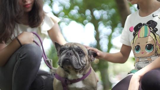 Yasmin, Mariah e o amor pelo pet adotado
