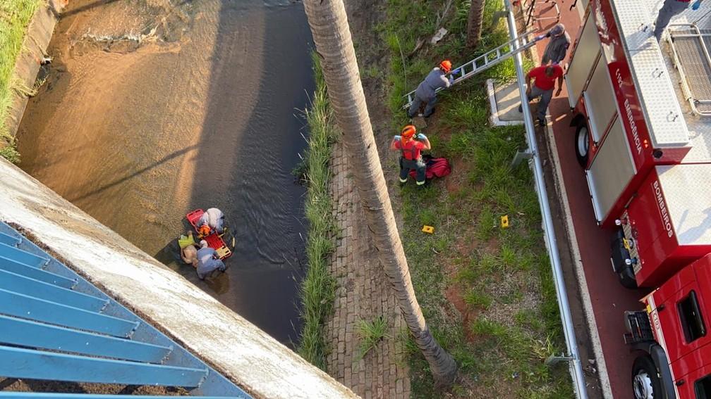 Bombeiros resgataram cadeirante ainda com vida de rio em Bauru; homem não resistiu aos ferimentos — Foto: Alisson Negrini/TV TEM