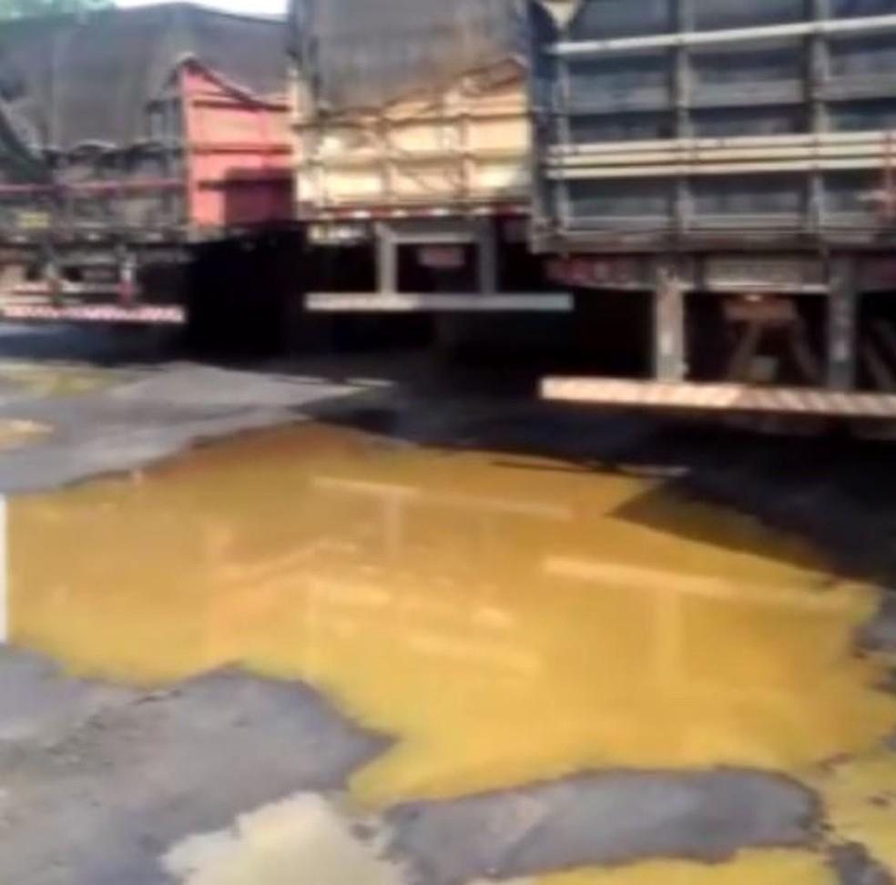 Imagem mostra apodrecimento de laranjas em caminhões em Matão (Foto: Arquivo Pessoal)