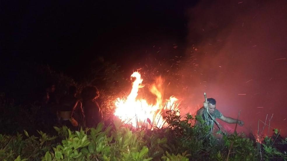 Incêndio destruiu cerca de três mil metros quadrados de vegetação no Morro do Farol, na Ilha do Mel — Foto: Roberto Santana Gonçalves/Arquivo pessoal