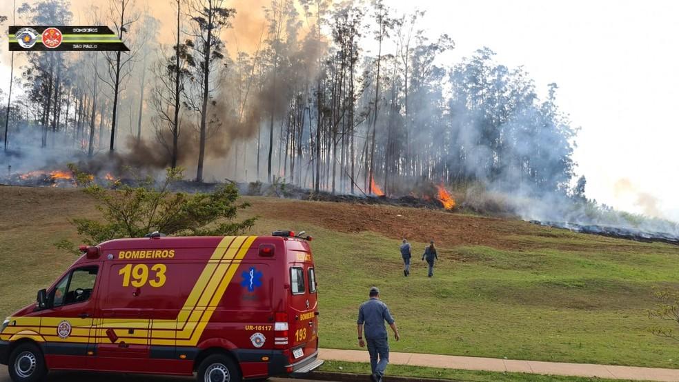 Incêndio em mata de Piracicaba após queda de avião no bairro Santa Rosa — Foto: Corpo de Bombeiros de SP
