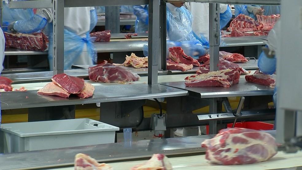 10 frigoríficos conseguiram autorização para vender carne bovina para a Indonésia — Foto: Reprodução/TV TEM