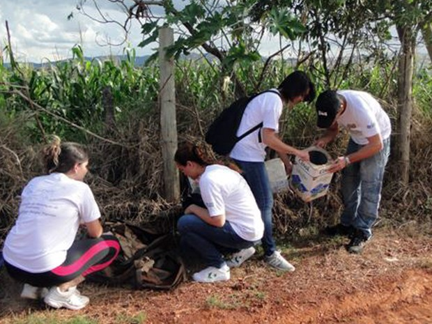 Ufla, combate ao Aedes Aegypti, Lavras (Foto: Ascom/Ufla)