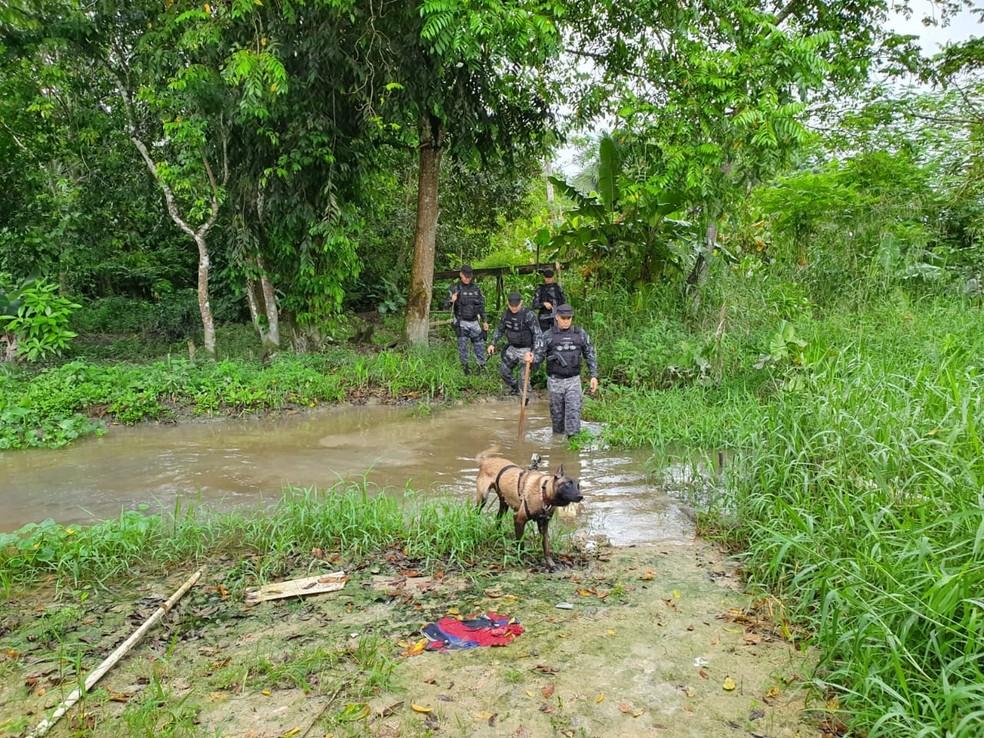 Polícia realiza buscas em área de mata — Foto: Alexandre Hisayasu/Rede Amazônica