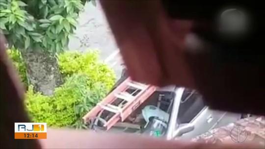 Vídeo mostra homem espancando filhotes de gatos que ele adotou no RJ