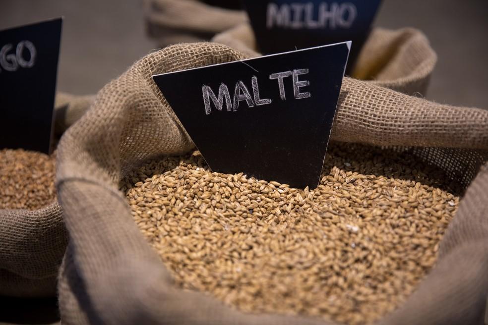 Malte é o principal ingrediente e nada mais é do que o grão de cevada que foi colhido, germinado e seco. (Foto: Marcelo Brandt/G1)