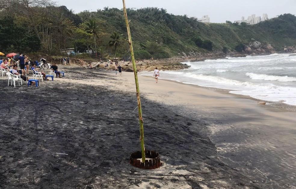 Bambu foi usado para marcar localização de barril (Foto: Solange Freitas/G1)