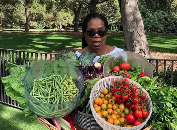 A cantora se espantou com a quantidade de hortaliças que nascem com apenas algumas sementes (Foto: Instagram/ Reprodução)