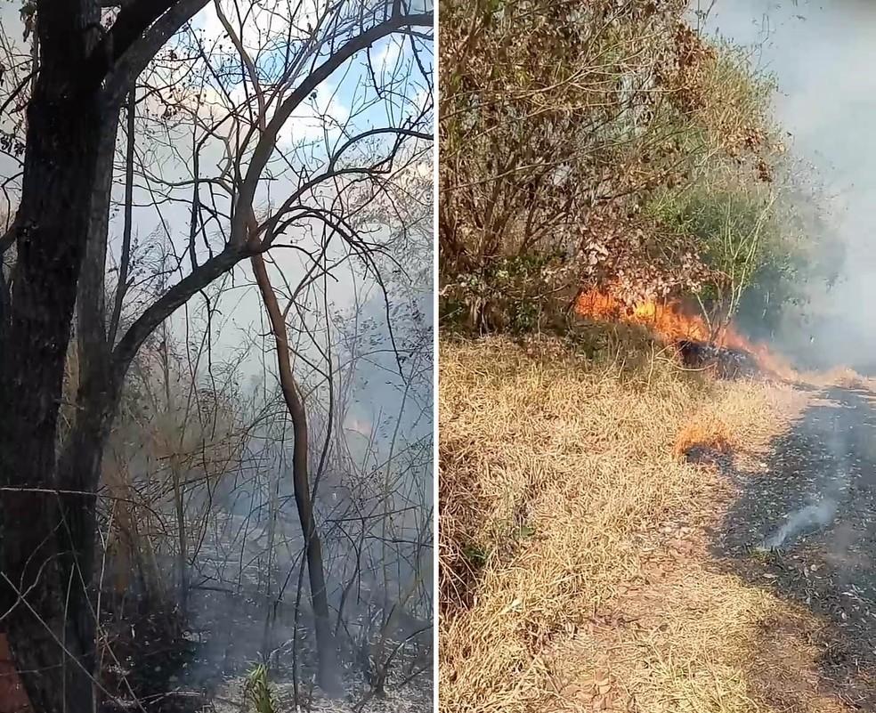 Defesa Civil e Corpo de Bombeiros levaram horas para apagar incêndio em Taquarituba — Foto: Defesa Civil/Divulgação