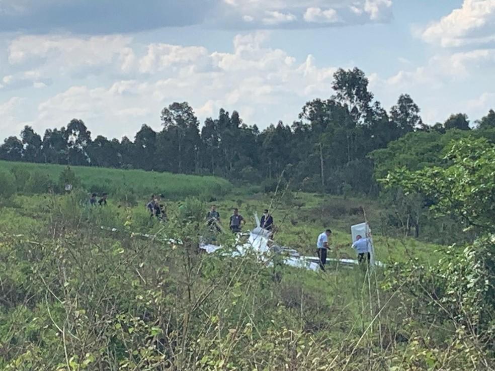 Avião caiu em uma área de mata às margens de rodovia em São Pedro — Foto: Giuliano Tamura/EPTV