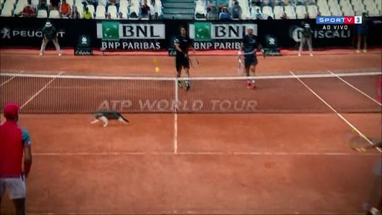 Deu azar? Gato invade quadra, e Marcelo Melo é eliminado nas quartas em Roma