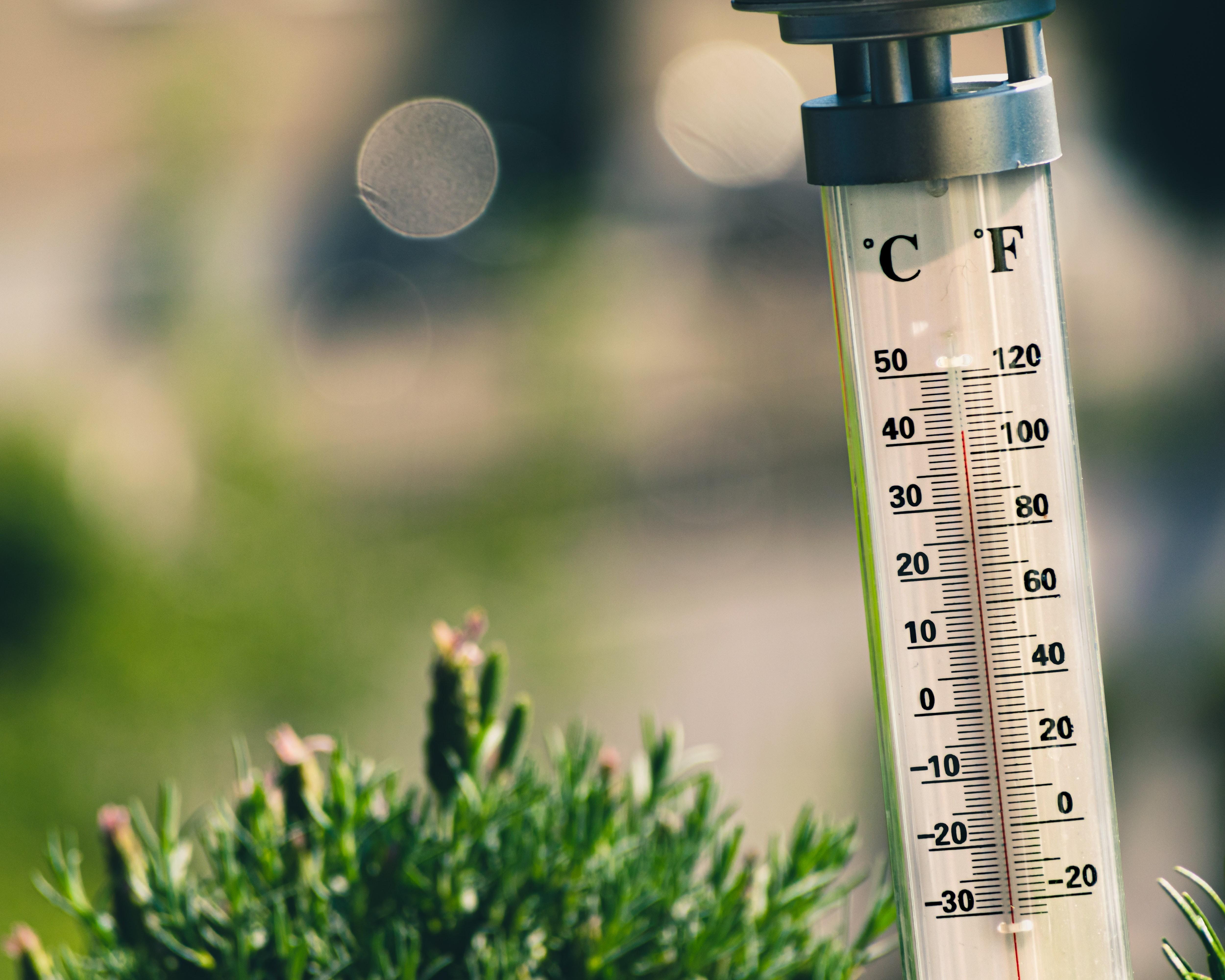 Temperatura e latitude não afetam disseminação da Covid-19, diz estudo (Foto: Unsplash)