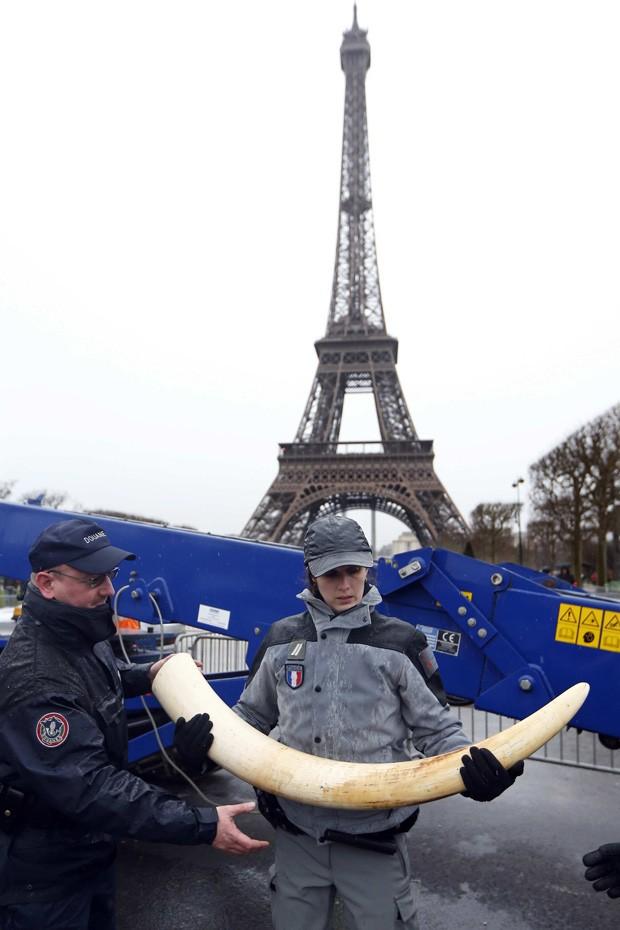 Torre Eiffel é vista ao fundo durante ação em Paris que destruiu 3 toneladas de marfim ilegal (Fot Reuters/Charles Platiau)