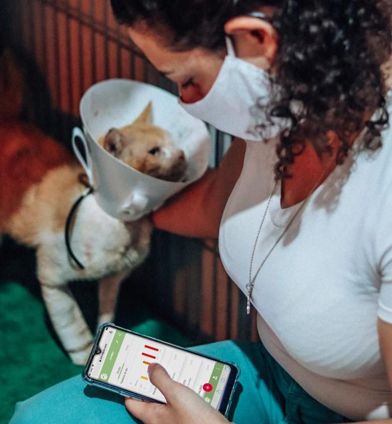 Pesquisadores da CESAR School e da Unesp desenvolvem aplicativo que detecta quando animal está sentindo dor (Foto: Melissa Pontes)