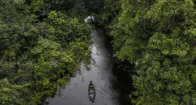 Embrapa lança portal que reúne tecnologias sustentáveis para a Amazônia