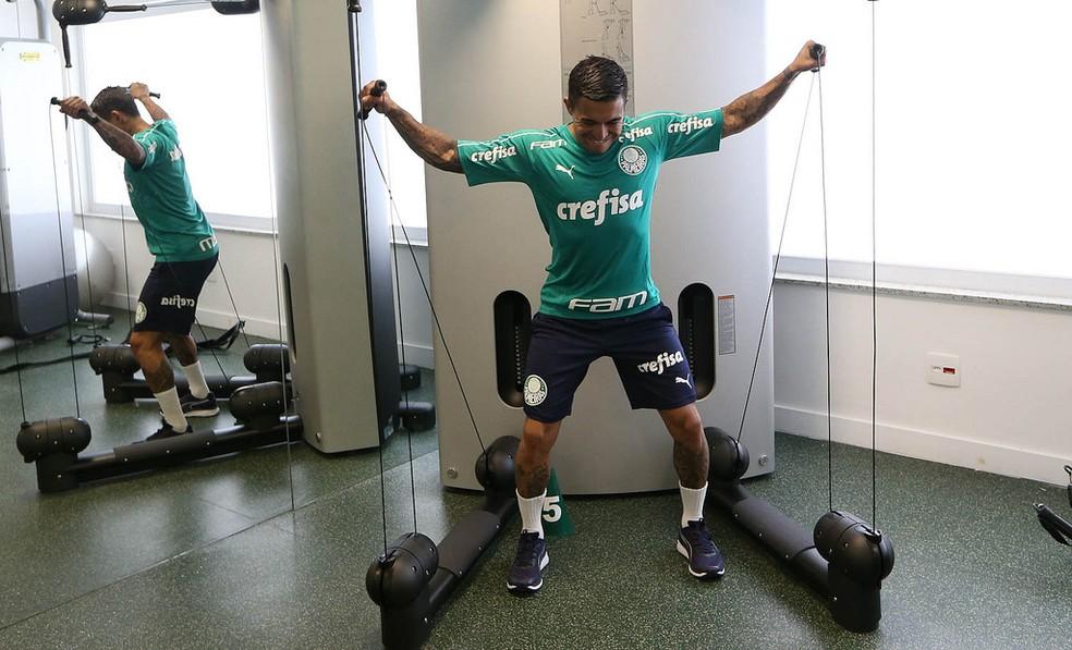 Dudu se reapresentou normalmente na pré-temporada palmeirense — Foto: Cesar Greco/Ag Palmeiras