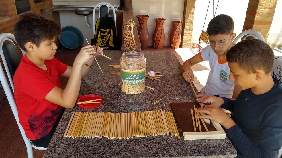 Canudos foram desenvolvidos por grupo de estudantes do ensino fundamental. — Foto: Vinícios de Morais Tavares/Divulgação