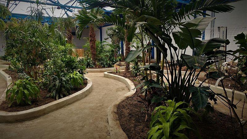 Parte interno do museu onde alguns dos animais ficavam expostos (Foto: Insectarium and Butterfly Pavilion/Wikimedia Commons)