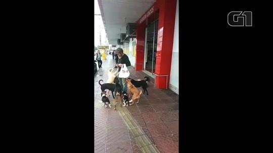 Morador de rua usa dinheiro de esmola para comprar comida para cães em Goiânia; veja vídeo