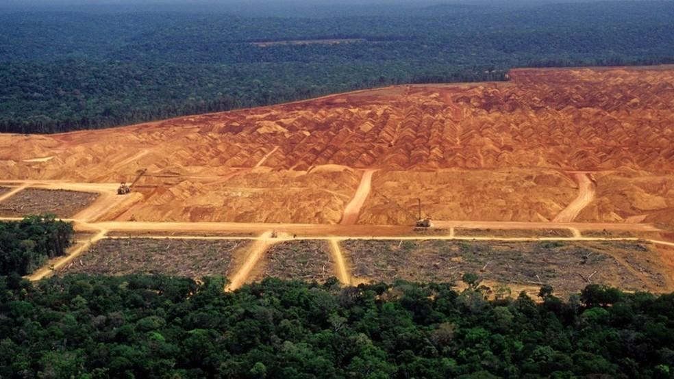 Área desmatada em floresta — Foto: Getty Images