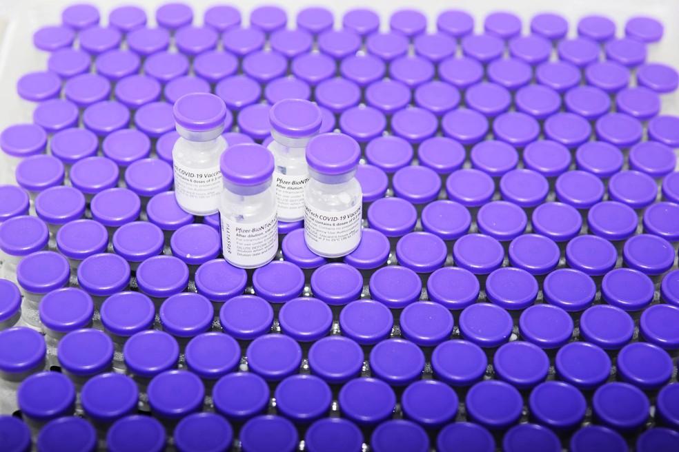 Vacinação contra Covid-19 — Foto: Américo Antonio