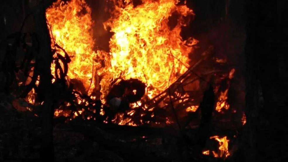 Piloto e copiloto morreram carbonizados, segundo Polícia Civil (Foto: Divulgação/Corpo de Bombeiros)