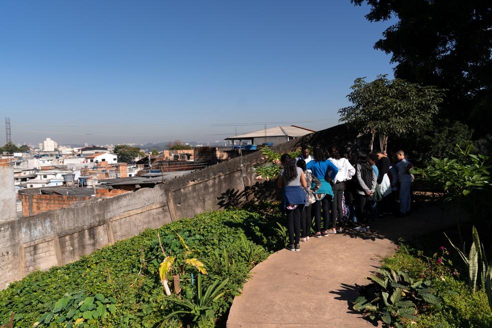 O projeto Prato Verde Sustentável conta hoje com 3 mil metros quadrados de horta. Foto: Marcelo Brandt/G1.
