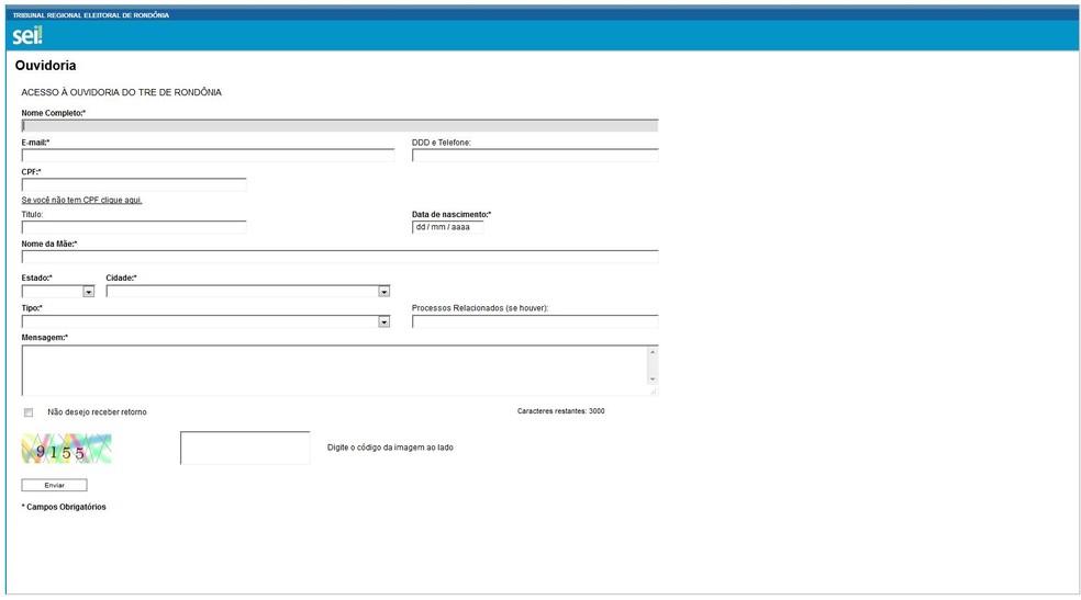 Sistema criado pelo TRE para receber denúncias eleitorais (Foto: Reprodução)