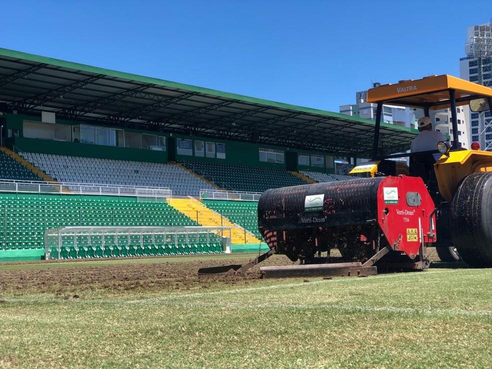 Gramado da Arena Condá passa por revitalização — Foto: Daniel Fasolin/Chapecoense